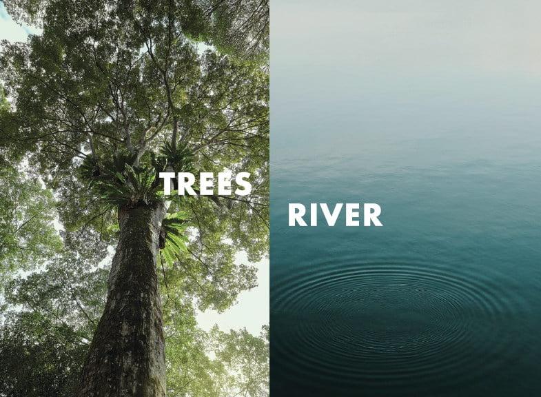 tre ver perspective 1