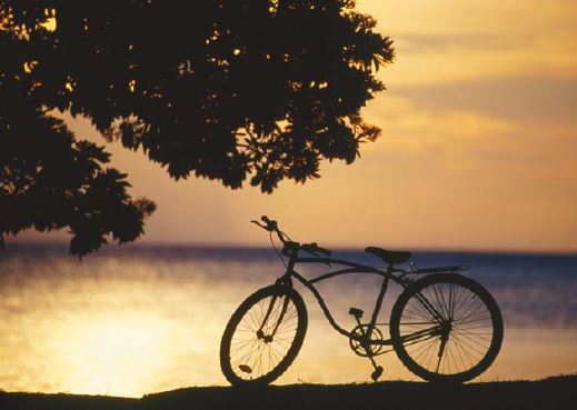 cycle along beach