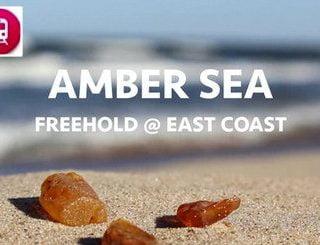 Amber Sea feature image